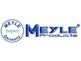 SUBFAMILIA DE MEYLE  Meyle